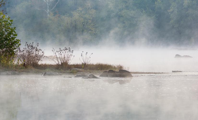 (1 st) Novice~Rebecca Doran~Morning Mist potomac River