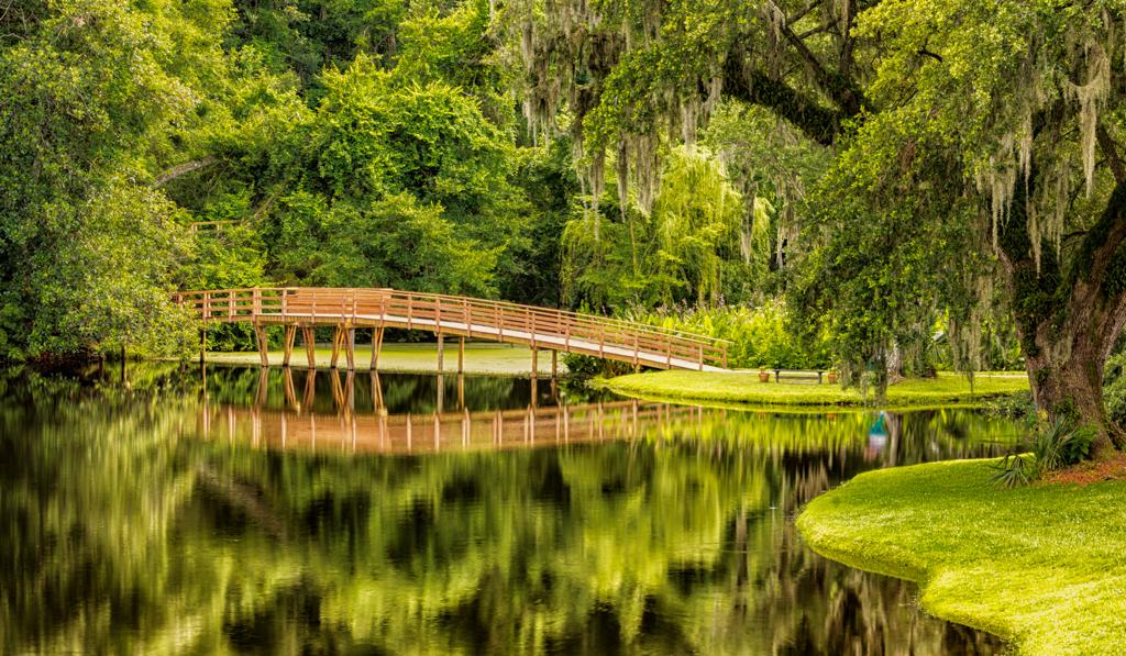 CO4~1~Novice~Linda~Eisenstadt~Savannah_Bridge_To_Nowhere_2~19