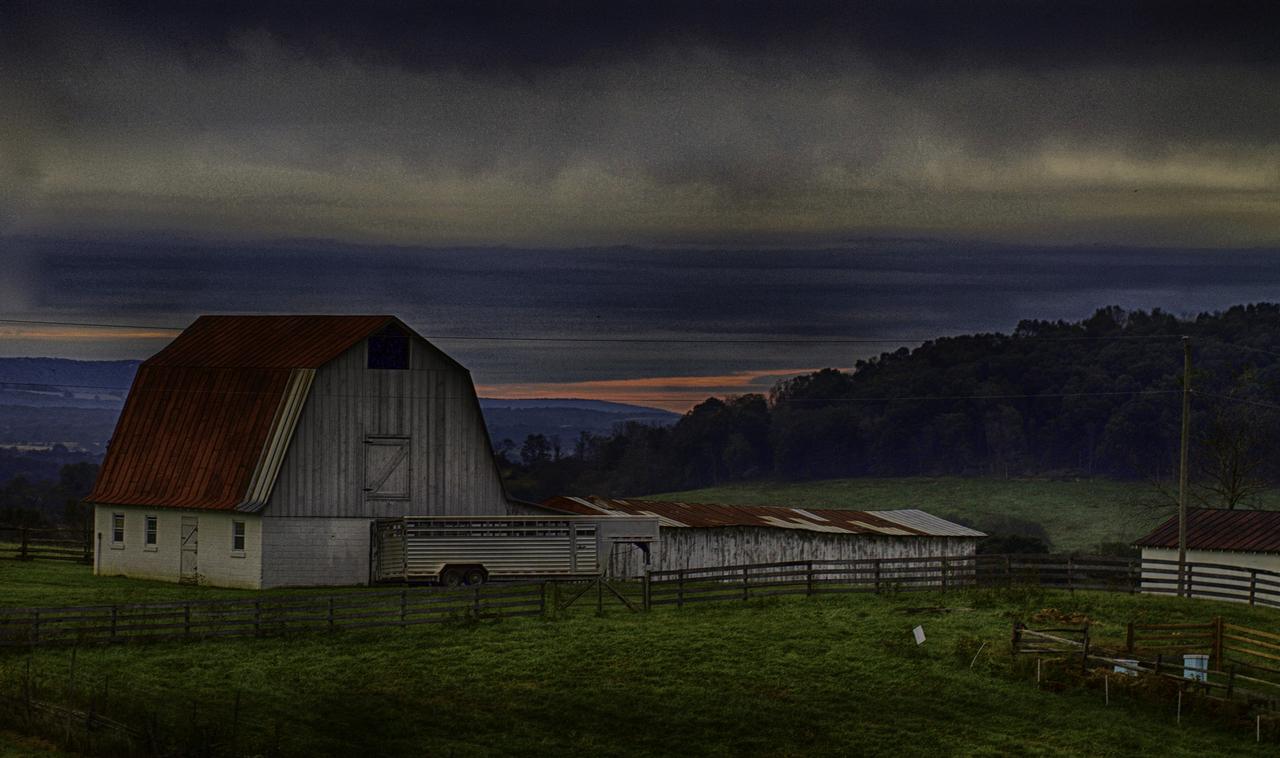 CO4~2~Advanced~Diane~Poole~Farm_Fresh~58