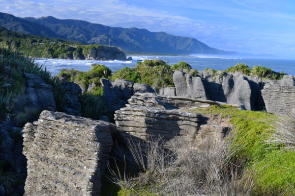 CO5~2~Advanced~Margaret~Sprott~Pancake_Rocks_Along_New_Zealand_Coast~69
