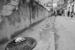 Havana street scenes